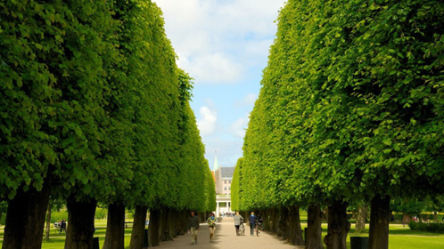 Thông tin du học Đan Mạch & Điều kiện tuyển sinh